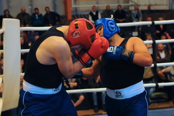 Galaodpoledne boxu Trutnov